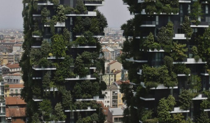 Canadians learning about trees from Italians? The benefits of a scarcity mentality